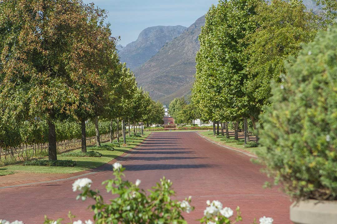 Val de Vie Winelands Estate